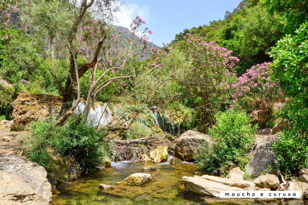 Camino de cascada Akchour