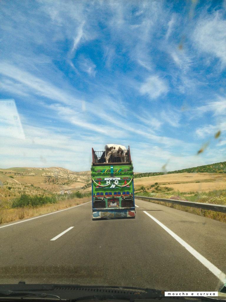 Autopista de camino a Fez