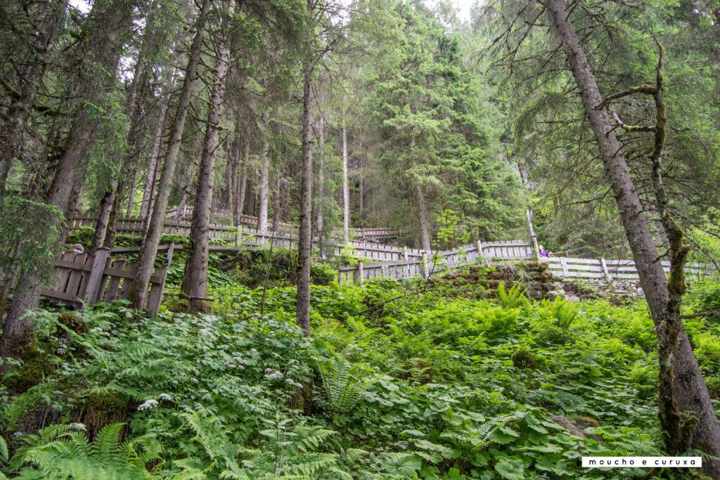 Cataratas Krimml - Camino