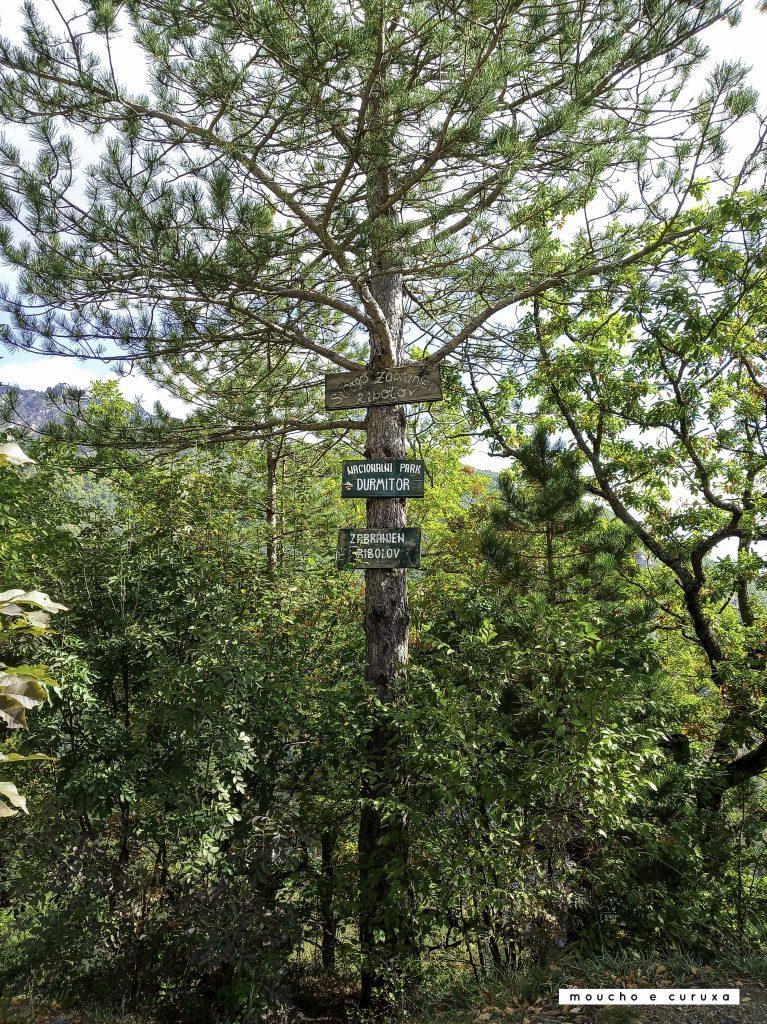 Parque Nacional de Durmitor